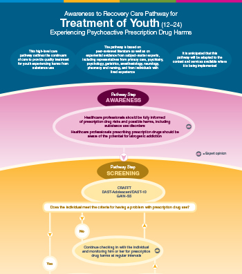 Care Pathway for Youth Experiencing Prescription Drug Harms [online version]