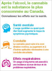 Connaissez les effets du cannabis sur la santé [infographie]