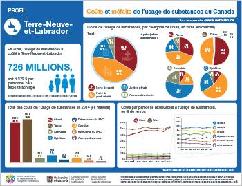 Coûts et méfaits de l'usage de substances à Terre-Neuve-et-Labrador
