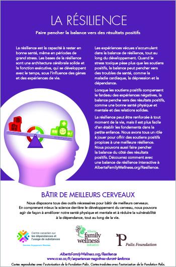 Cartes d'information pour les bâtisseurs de cerveaux