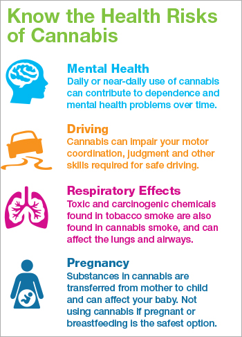 Know the Health Effects of Cannabis [infographic]