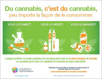 Du cannabis, c'est du cannabis, peu importe la façon de le consommer [infographie]