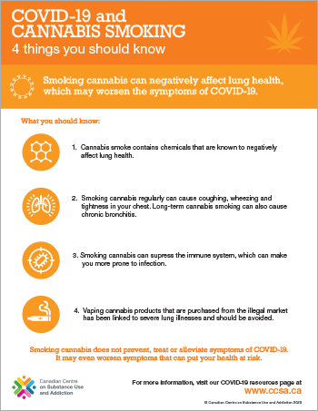 COVID-19 and Cannabis Smoking: 4 Things You Should Know [infographic]