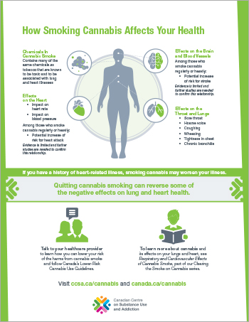 How Smoking Cannabis Affects Your Health [poster]