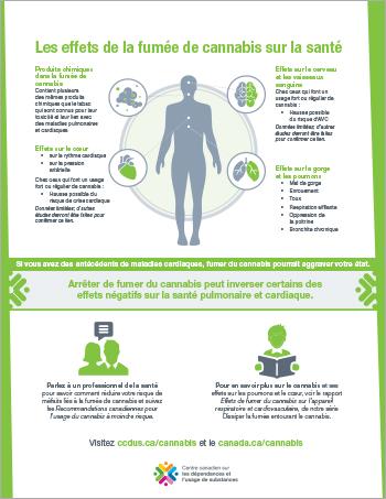 Les effets de la fumée de cannabis sur la santé [affiche]