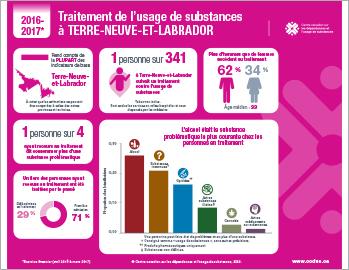 Traitement de l'usage de substances à Terre-Neuve-et-Labrador en 2016–2017 [infographie]